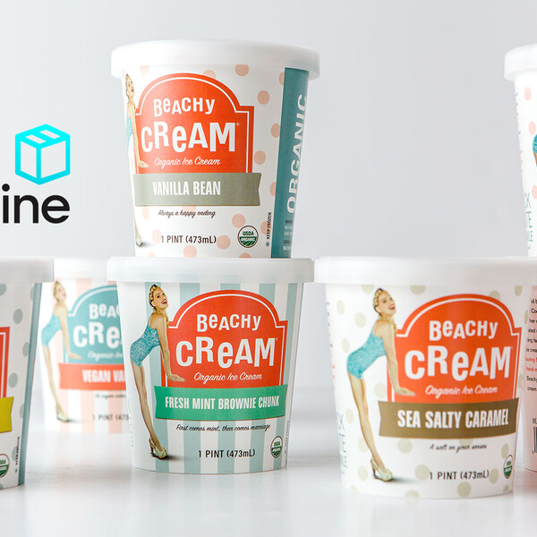 Beachy cream ice cream pint food packaging design dieline 2x